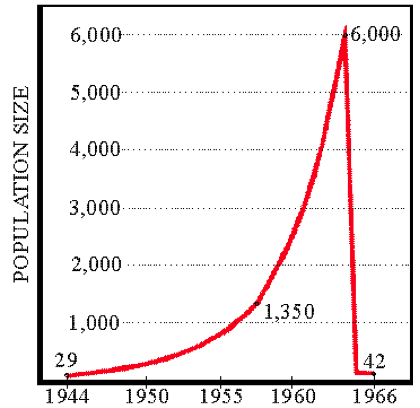 Figure 4. Assumed population of St. Matthew Reindeer herd, with actual counts given. Based on research of  David R. Klein.
