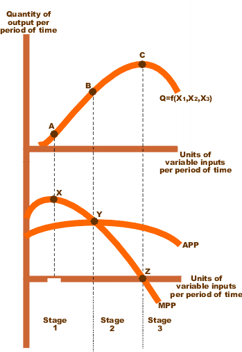 total average and marginal product Total product : total product (tp) is the total output a production unit can produce, using different combination of factors of production diagram 1: as the amount of labor goes up, the total output or total product goes up.