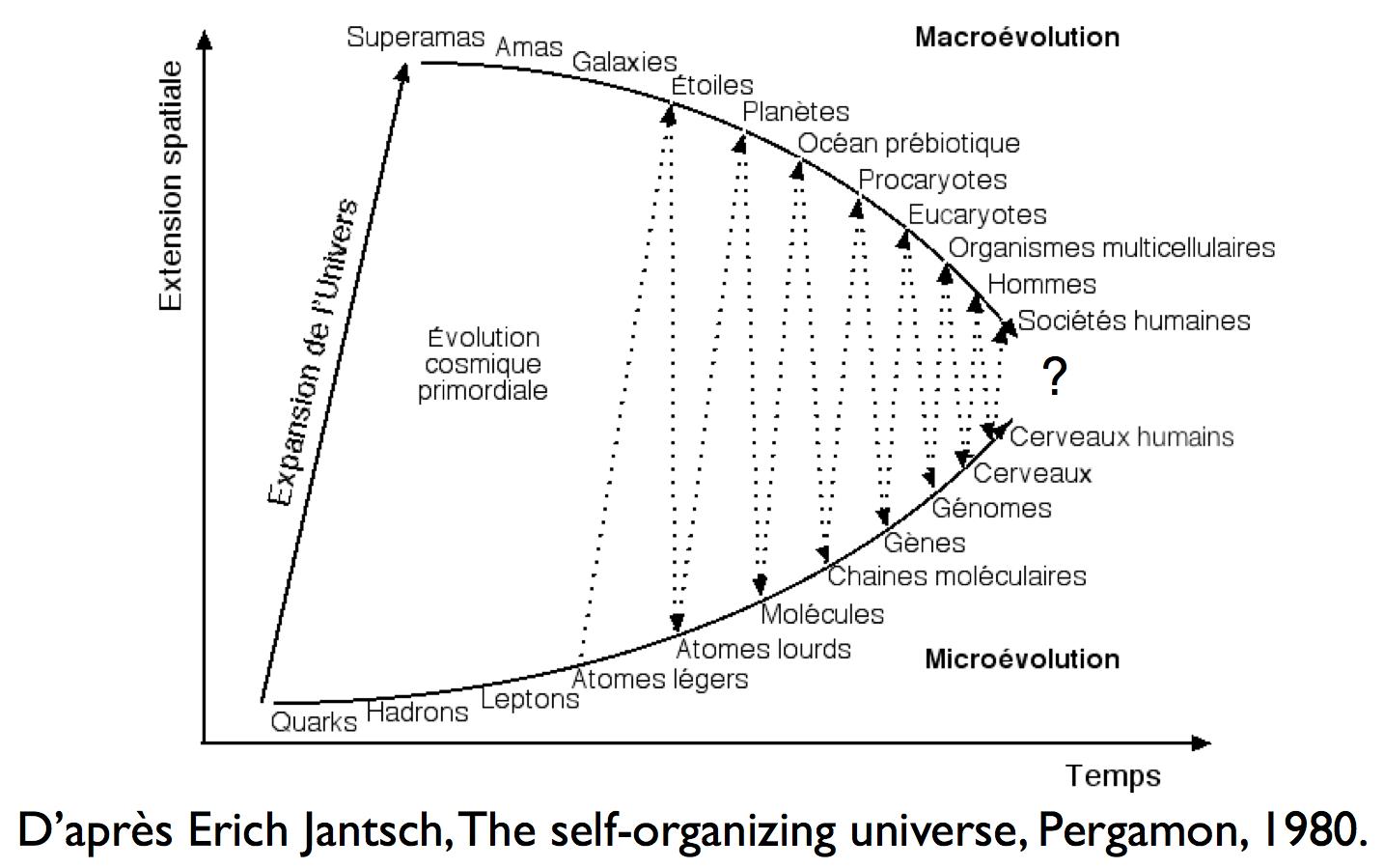 The self-organizing universe