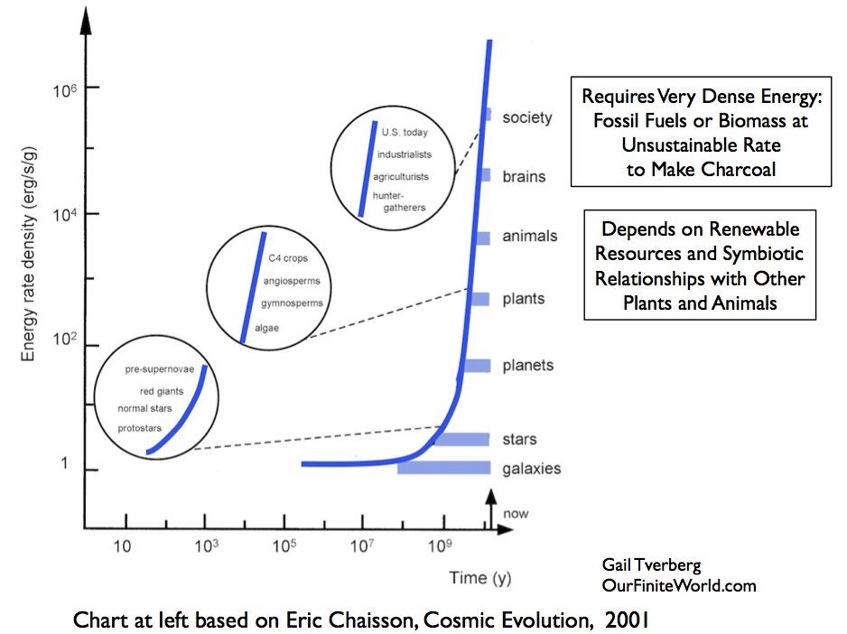 Energy rate density based on Eric Chaisson's analysis.
