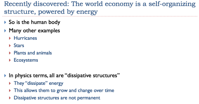 7 recently discovered the world economy is a self organizing structure